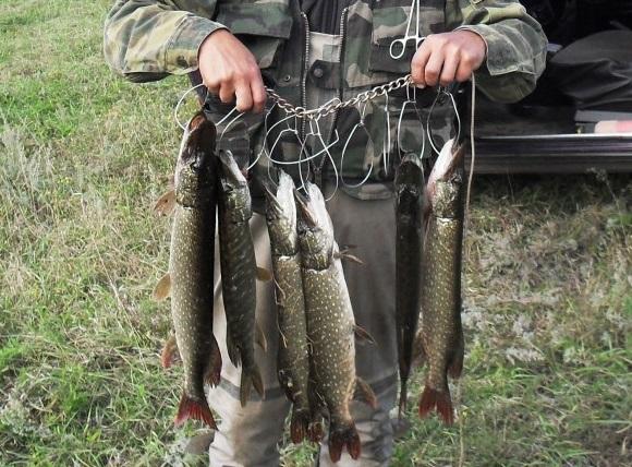 кукан на рыбалке